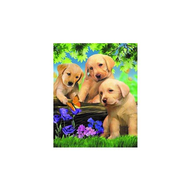 3D Postkort med Hundehvalpe