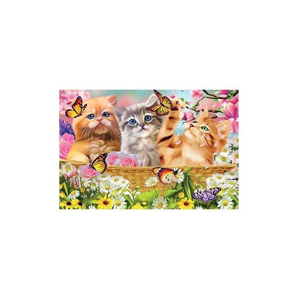 3D Postkort med Katte med sommefugle