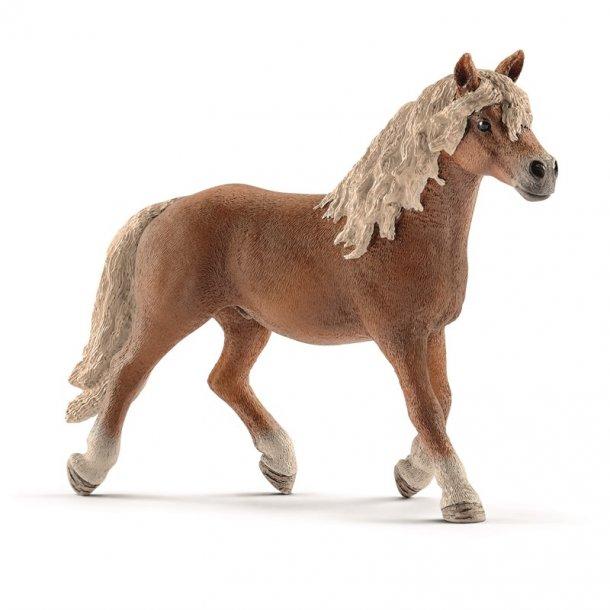 Rask Schleich Haflinger Hingst - Heste - Klovnen Tulle's legetøj AE-88