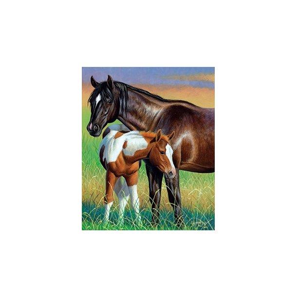 3D Postkort med Heste