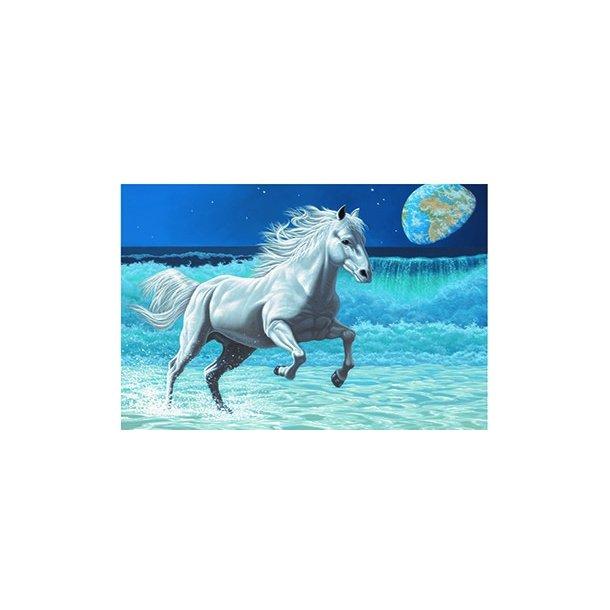 3D Postkort med Hest på strand
