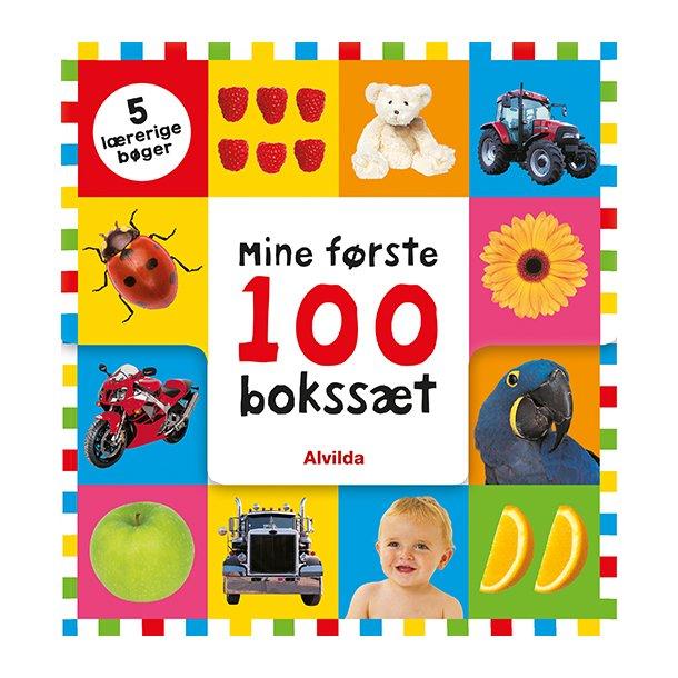 Boks med 5 lærerige bøger om 100 ting